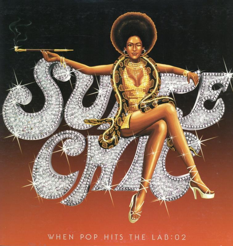 SUITE CHIC (安室奈美恵)/WHEN POP HITS THE LAB:02のLPレコード通販・販売ならサウンドファインダー
