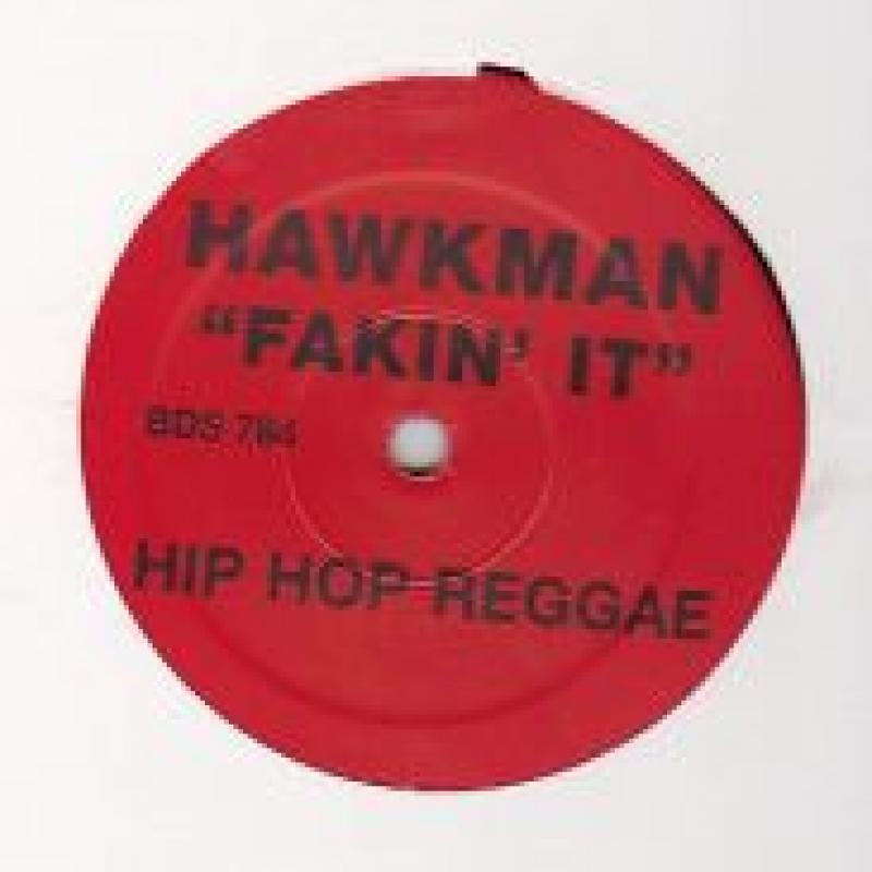 HAWKMAN/FAKIN'