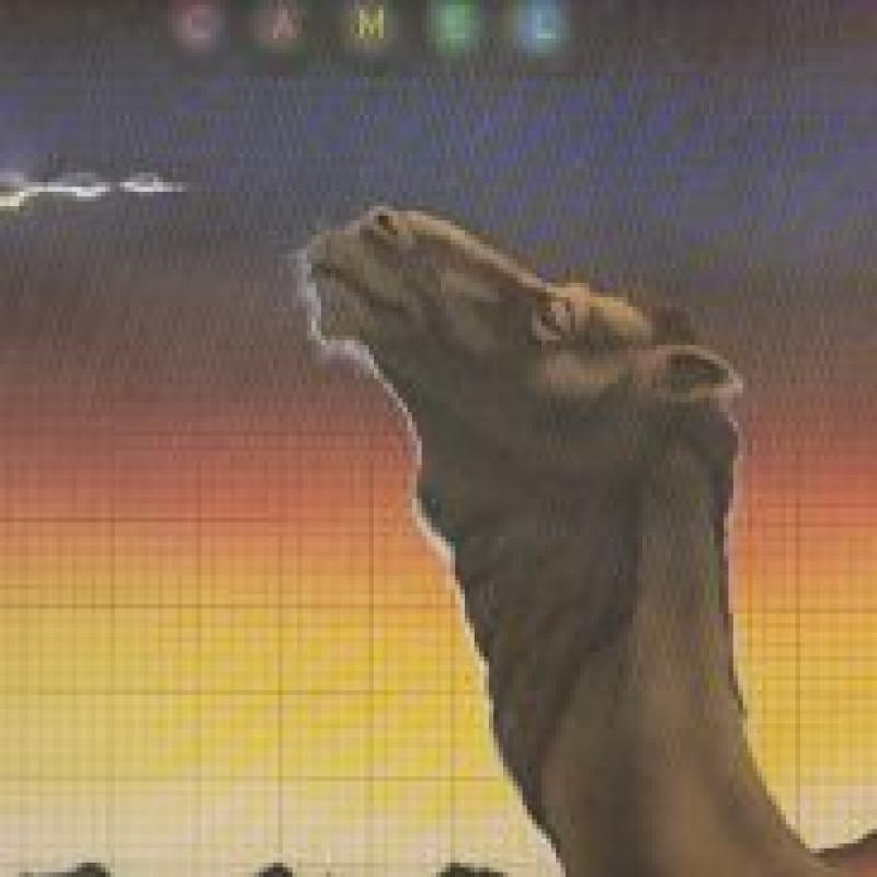 "CAMEL/BREATHLESSのLPレコード通販・販売ならサウンドファインダー"""