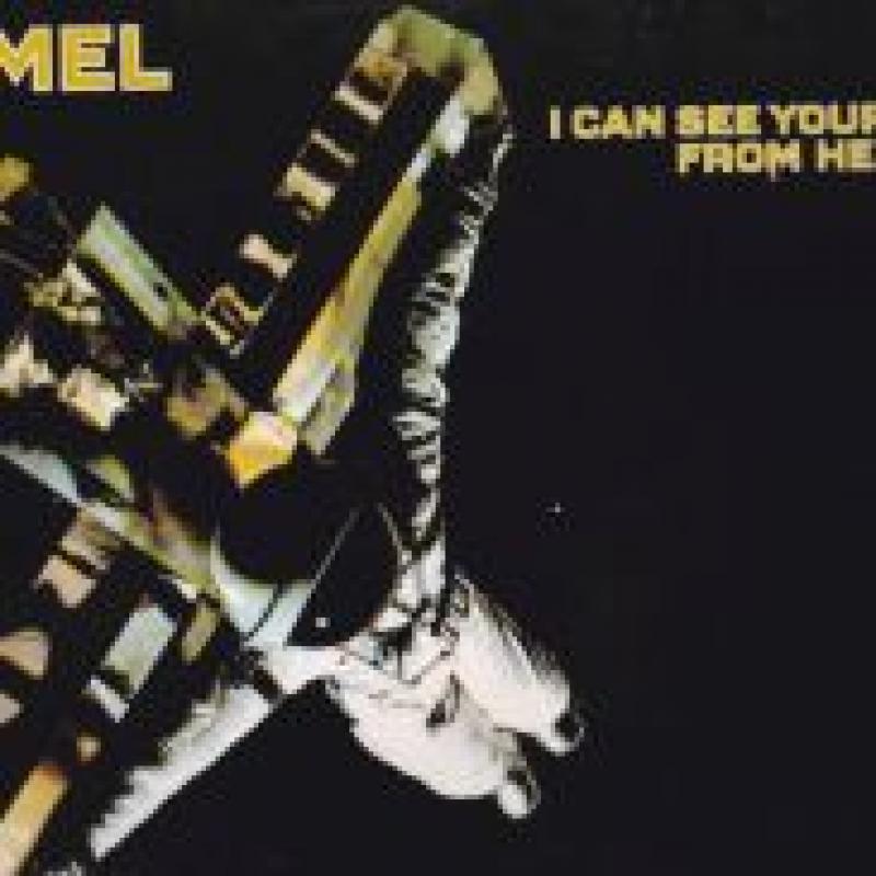 CAMEL/I