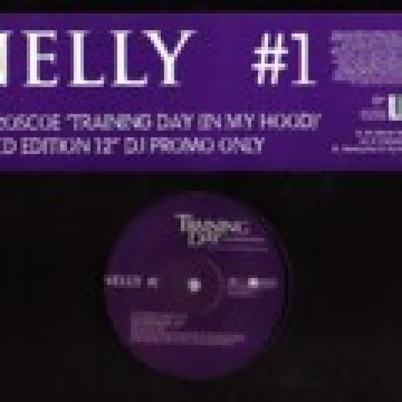 """NELLY/#1の12インチレコード通販・販売ならサウンドファインダー"""""""