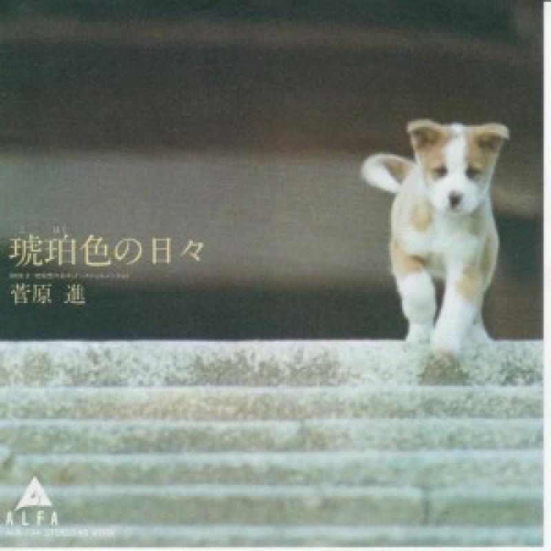 """菅原進/琥珀色の日々の7インチレコード通販・販売ならサウンドファインダー"""""""