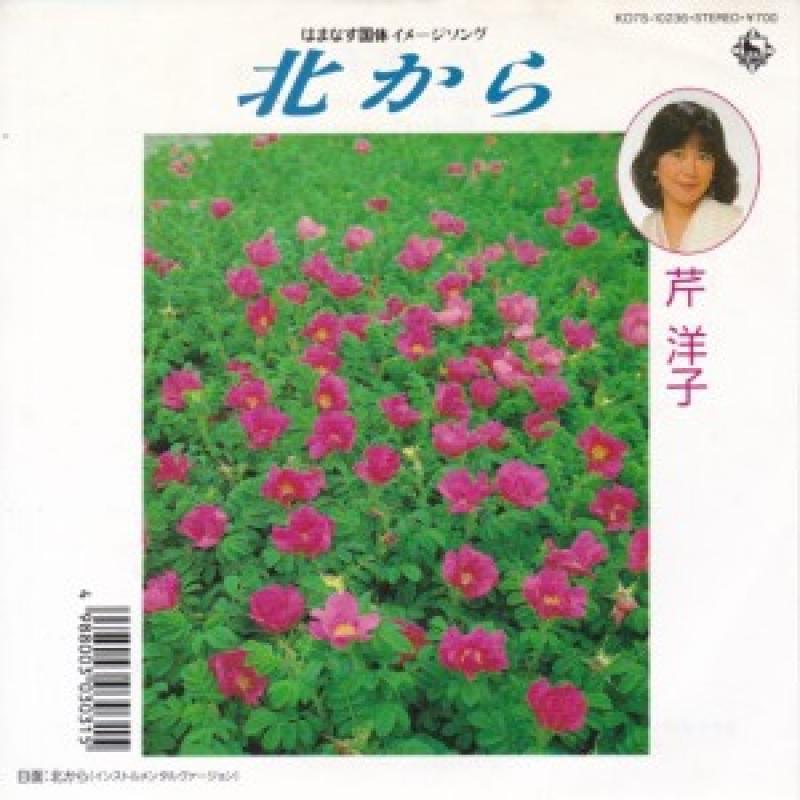 """芹洋子/北からのLPレコード通販・販売ならサウンドファインダー"""""""
