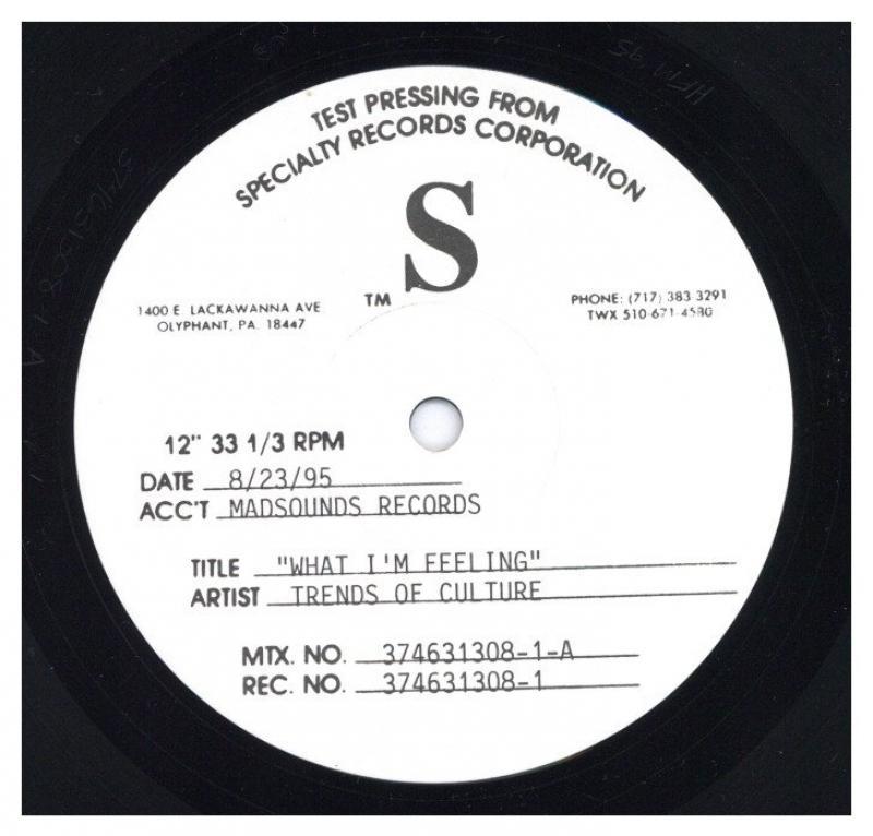 TRENDS OF CULTURE/WHAT I'M FEELING (TEST PRESS)の12インチレコード通販・販売ならサウンドファインダー