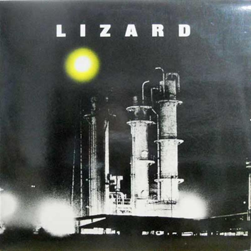 "LIZARD/LizardのLPレコード通販・販売ならサウンドファインダー"""