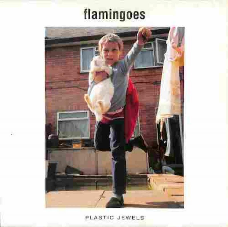 FLAMINGOES/Plastic