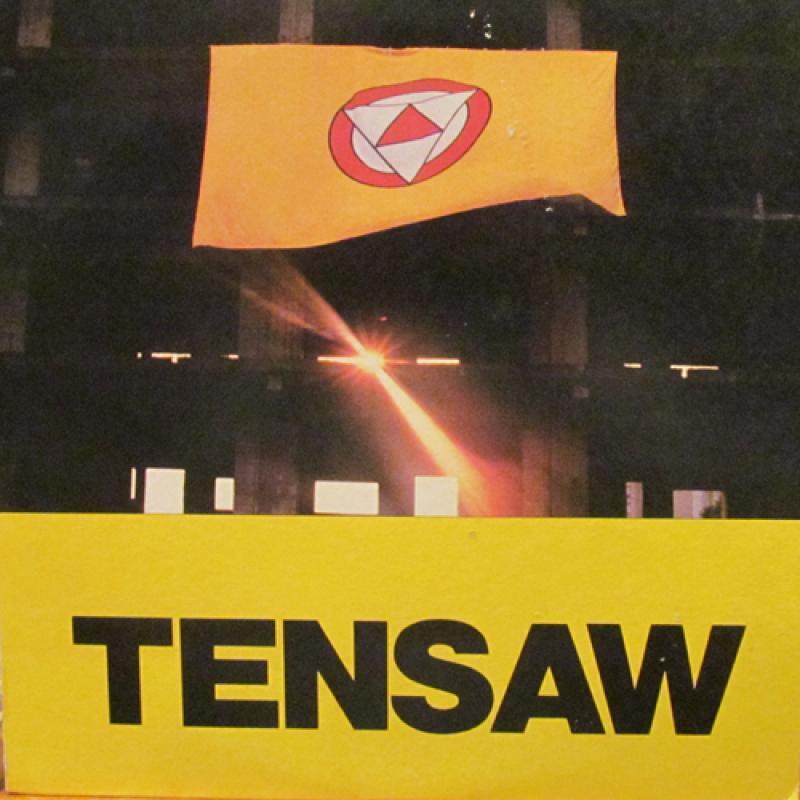"""TENSAW/S.T.のLPレコード通販・販売ならサウンドファインダー"""""""