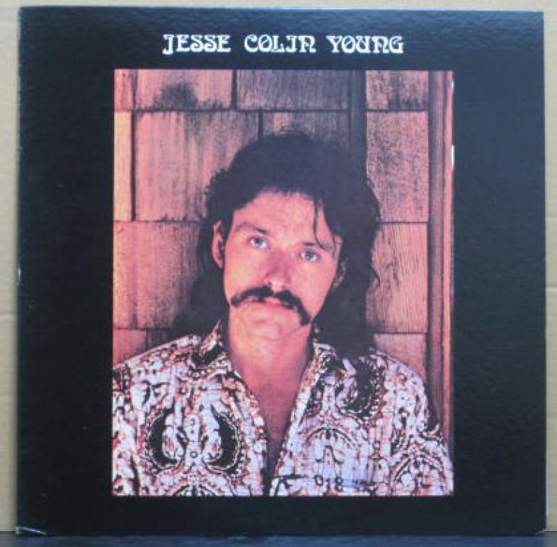 """ジェシ・コリン・ヤング/ソング・フォー・ジュリーのLPレコード通販・販売ならサウンドファインダー"""""""