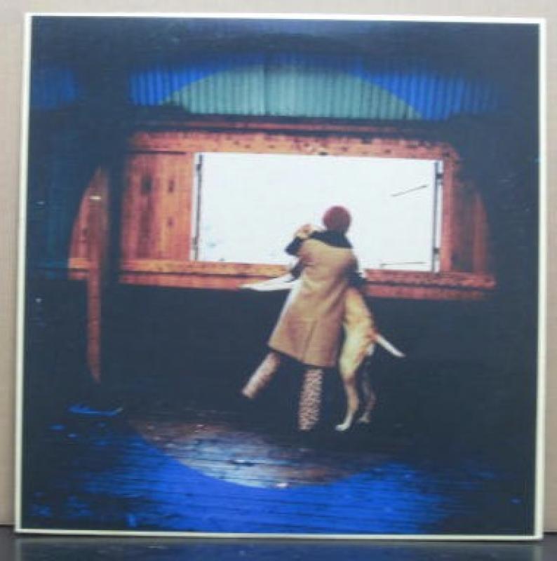 Bonnie Pink(ボニーピンク)/犬と月の12インチレコード通販・販売ならサウンドファインダー