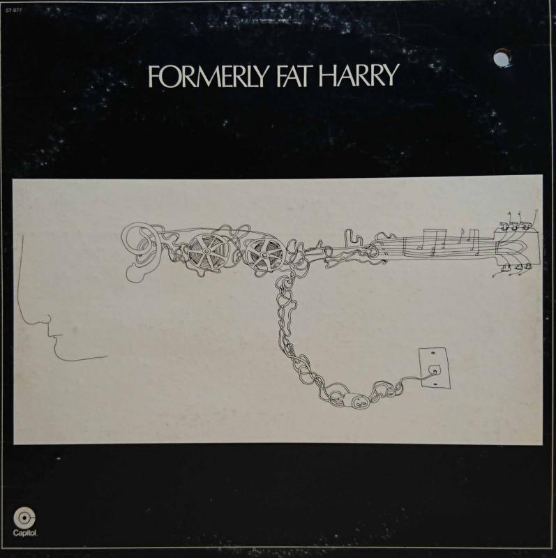 FORMERLY FAT HARRY/Formerly Fat HarryのLPレコード vinyl LP通販・販売ならサウンドファインダー