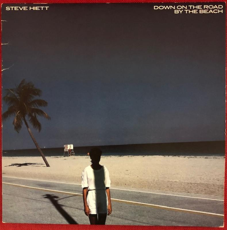 Steve Hiett/Down On The Road By The BeachのLPレコード通販・販売ならサウンドファインダー